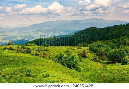 Grassy Hillside Of Carpathian Mountains. Magnificent Borzhava Mountain Ridge In The Distance. Viewin