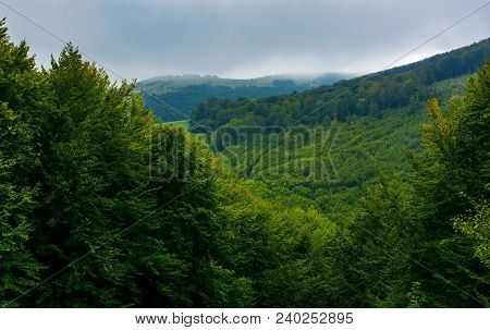 Mountain Behind The Forested Hill. Lovely Nature Background On An Overcast Autumn Day