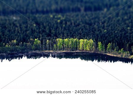 Green Trees By A Lake Shore With Dark Reflections In The Water Seen From Above