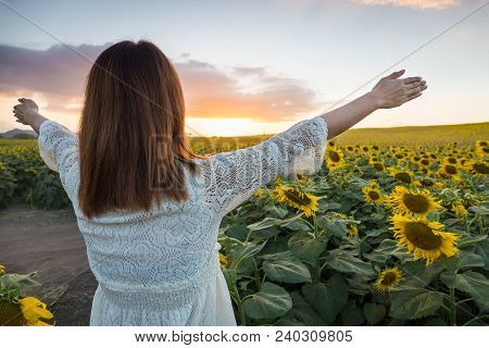 Happy Woman In Sunflower Field. Summer Girl In Flower Field Cheerful. Asian Caucasian Young Woman Ra