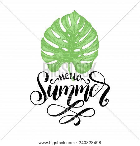 Hand Lettering Hello Summer. Vector Inspirational Phrase On Palm Leaf Background.