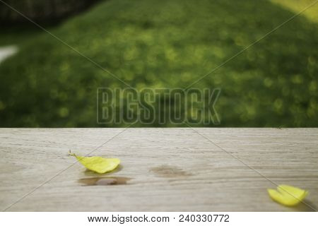 Petals Yellow Flower On Wooden Table In Summer, Stock Photo