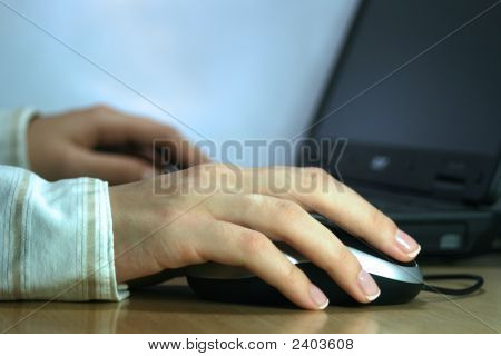 Business Woman Working On Her Laptop