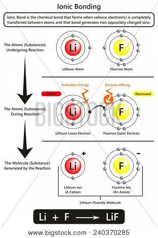 Ionic bonding infographic diagram with example of Ionic bond between lithium and fluorine atoms showing ionization energy and electron affinity for chemistry science education