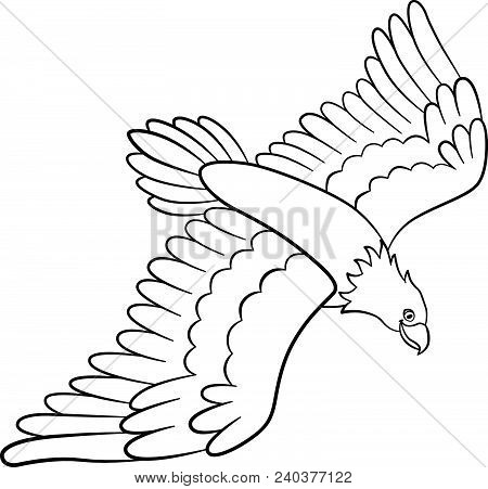 Flying Eagle Coloring Page - Free Eagle Coloring Pages ... | 451x450