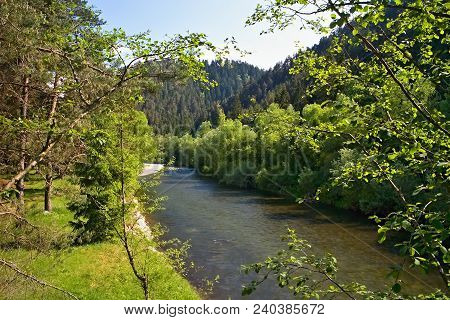 Borova Sihot - Liptovsky Hradok: View From The Rocking Bridge Over The River Vah. Water, Trees And R