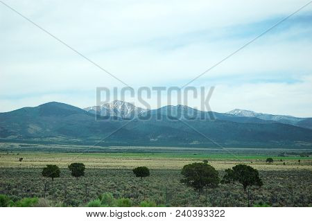 Grassland With Trees In Front Of Mountain Range