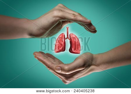 A Human Lungs Between Two Palms Of A Woman On  Blue And Green Background. The Concept Of A Healthy L