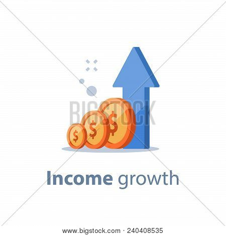 Long Term Investing Strategy, Income Growth, Boost Business Revenue, Investment Return, Fund Raising