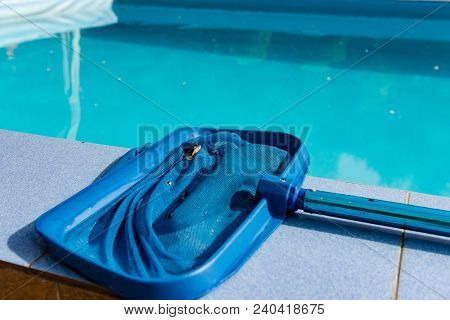 Close Up Of Net Cleaner On Pool Tile. Cleaning Tool Lay On Blue Swimming Pool Outdoors
