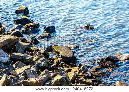 Rocks On The Shoreline Of The Matsqui Dyke Along The Fraser River Between The Towns Of Abbotsford An