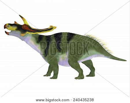 Anchiceratops Dinosaur Side Profile 3d Illustration - Anchiceratops Ornatus Was A Herbivorous Cerato
