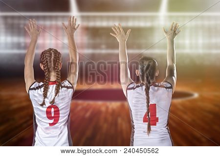 Female Professional Volleyball Player On Volleyball Court.