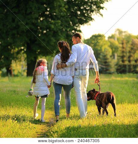 Little Girl With A Pregnant Mother, A Happy Father And A Pet Dog For A Walk In The Park On A Spring