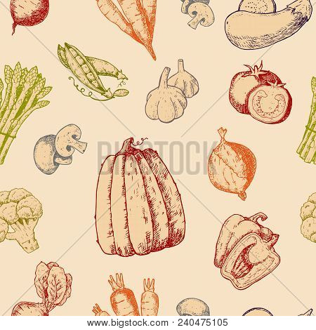 Vegetables Handdraw Sketch Vector Vegetably Logotype Tomato Or Carrot For Vegetarians And Label Of H