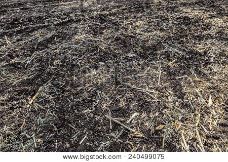 Field With Removed Harvested Crop. Chernozem Soil (black Soil). Flat Surface.