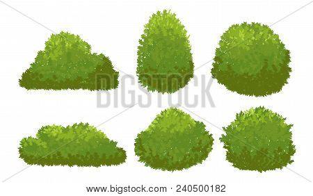 Garden Green Bushes. Cartoon Shrub And Bush Vector Set Isolated On White Background. Bush Nature Pla