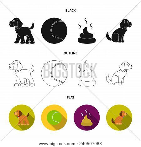 Dog Sitting, Dog Standing, Tennis Ball, Feces. Dog Set Collection Icons In Black, Flat, Outline Styl