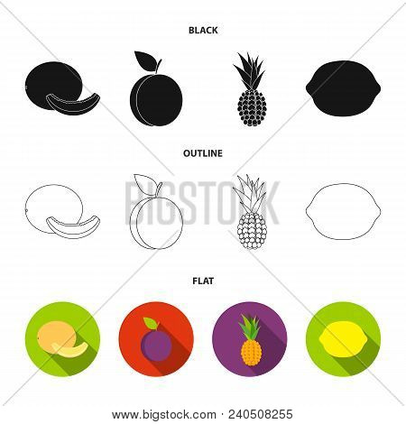 Melon, Plum, Pineapple, Lemon.fruits Set Collection Icons In Black, Flat, Outline Style Vector Symbo