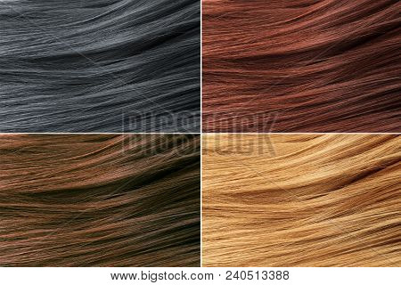 Hair Colors Palette. Hair Texture Background, Hair Colours Set. Tints. Dyed Hair Color Samples.