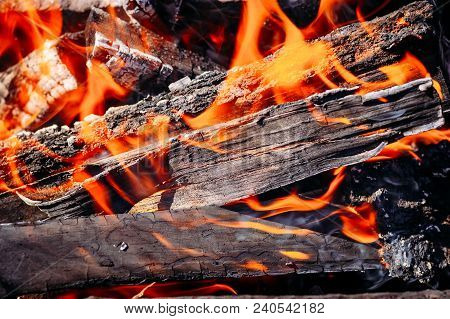 Burning Coals Of Firewood, The Flame Of Fire. Close-up