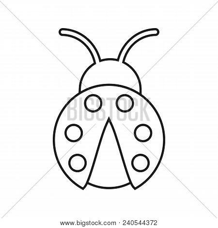 ladybug outline vector & photo (free trial)   bigstock  bigstock