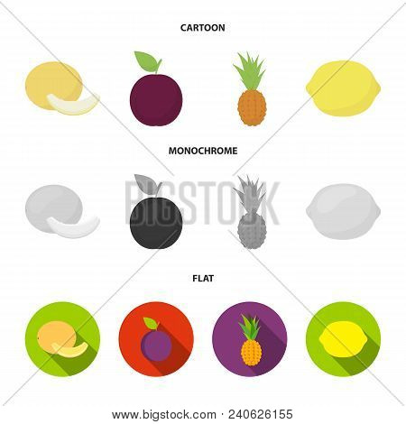 Melon, Plum, Pineapple, Lemon.fruits Set Collection Icons In Cartoon, Flat, Monochrome Style Vector