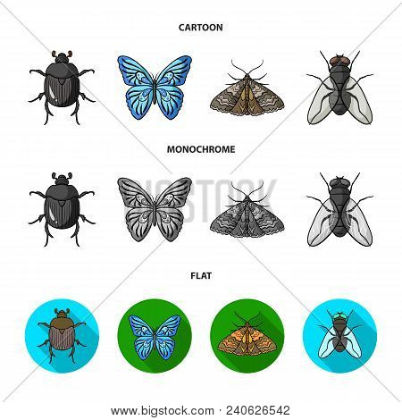 Wrecker, Parasite, Nature, Butterfly .insects Set Collection Icons In Cartoon, Flat, Monochrome Styl