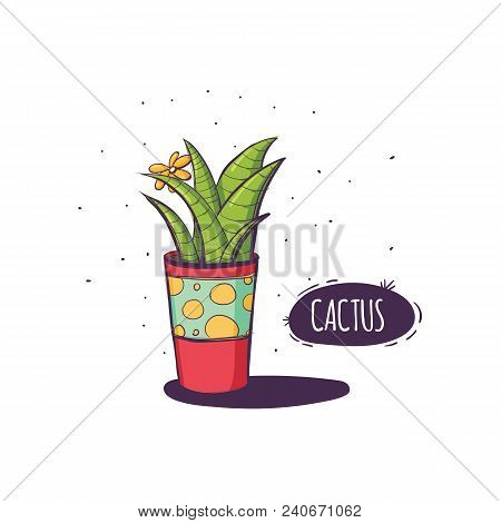 Set Of Cactus. Hand Drawn Succulent Ornament. Color Illustration. A Set Of Cacti - Line Drawing. Vec