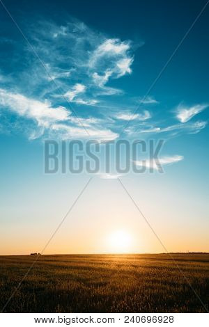 Sunset, Sunrise, Sun Over Rural Countryside Meadow. Bright Blue And Yellow, Orange Sky And Dark Grou