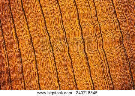 Vintage Surface Wood Table And Rustic Texture Background. Rustic Wall Made Of Old Wood Table Planks