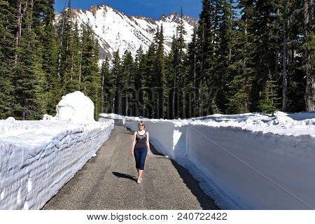 Vacation Travel In North Cascades National Park. Woman Walking On Road With Deep Snow On Curbs. Casc