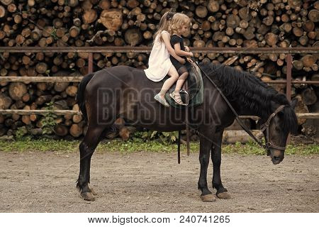 Children Sit In Rider Saddle On Animal Back. Girls Ride On Horse On Summer Day. Friend, Companion, F