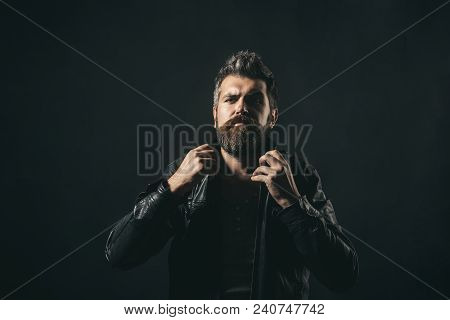 Fashion Man. Handsome Serious Bearded Male Model Portrait Wear Black Leather Jacket. Attractive Bear