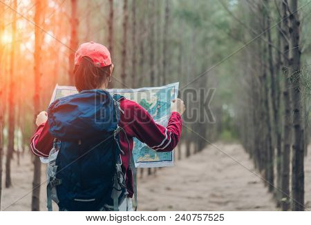 Asian Woman Travel With Backpack At Spruce Forest Looking Map The Route Go To Destinations, Girl Tra