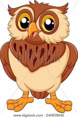 Cartoon Of Cute Owl Isolated On White Background