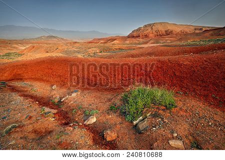 Red Desert Canyons