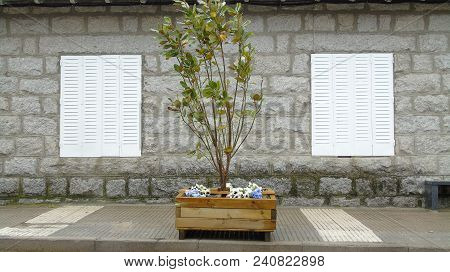Wooden Planter With Plant And Flowers On The Sidewalk