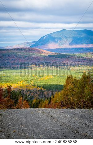 Sunlight And Shadows Over The Maine North Woods From A Dirt Road