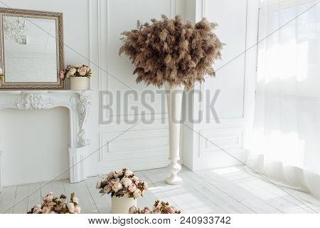 Dry Thistle, Burdock And Reeds Common Bulrush In Vase Isolated On White Wall Background.