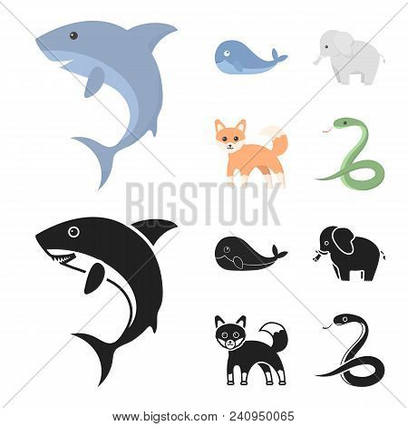 Whale, Elephant, Snake, Fox.animal Set Collection Icons In Cartoon, Black Style Vector Symbol Stock