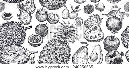 Seamless Vector Pattern With Exotic Fruits. Pineapple, Avocado, Pomegranate, Lychee, Durian, Passion