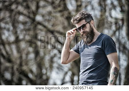 Bearded Man Takes Off Sunglasses On Sunny Day. Masculinity Concept. Man With Long Beard Looks Stylis