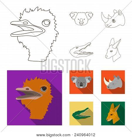 Ostrich, Koala, Rhinoceros, Crocodile, Realistic Animals Set Collection Icons In Outline, Flat Style