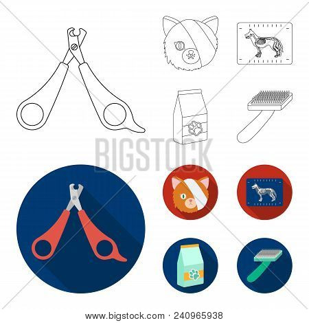 Scissors, Cat, Bandage, Wounded .vet Clinic Set Collection Icons In Outline, Flat Style Vector Symbo