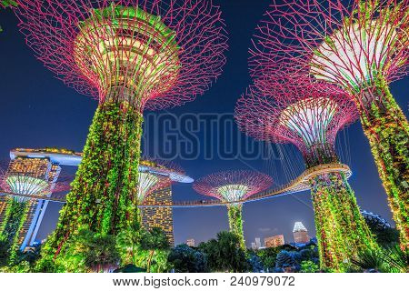 Singapore - April 29, 2018: Bottom View Of Supertree Grove With Skybridge At Gardens By The Bay Ligh