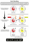 Ionic bonding infographic diagram with example of Ionic bond between lithium and fluorine atoms showing ionization energy and electron affinity for chemistry science education poster