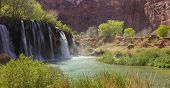 Lower Navajo Falls falling into an opaque blue-green pool. This waterfall is on the hike into Havasu Falls on the Havasupai Reservation near the Grand Canyon, Arizona. poster