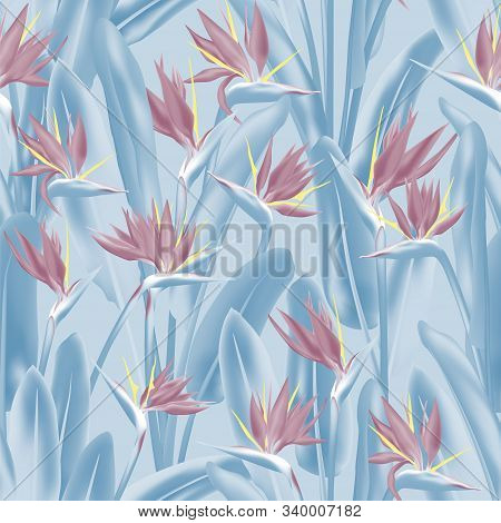 Bird Of Paradise Tropical Flower Vector Seamless Pattern. Jungle Plant Paradise Tropical Summer Fabr