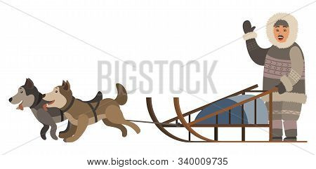 Man Wearing Thick And Warm Clothes Riding Sleigh With Husky Dogs. Sled Dog Running And Transporting